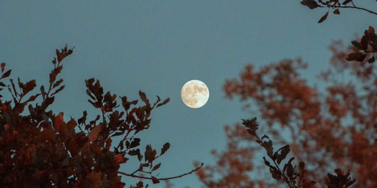 A Non-Comprehensive List Of Self-Care Rituals For The FullMoon