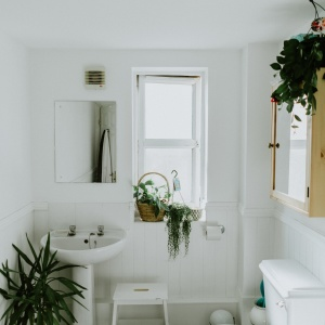 Best Toilet Heights For Everyday Use