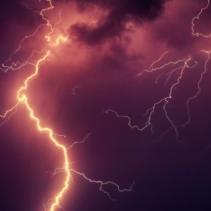 Lightning Struck The Tree Outside My House — And Weird Things Have Been Happening Ever Since