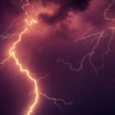 Lightning Struck The Tree Outside My House -- And Weird Things Have Been Happening Ever Since