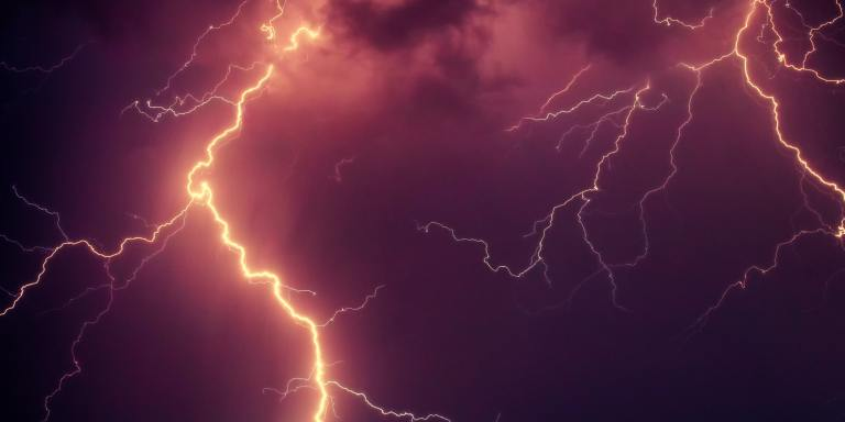 Lightning Struck The Tree Outside My House — And Weird Things Have Been Happening EverSince