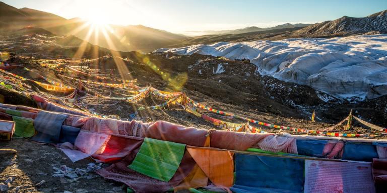110+ Inspiring Dalai Lama Quotes on Peace