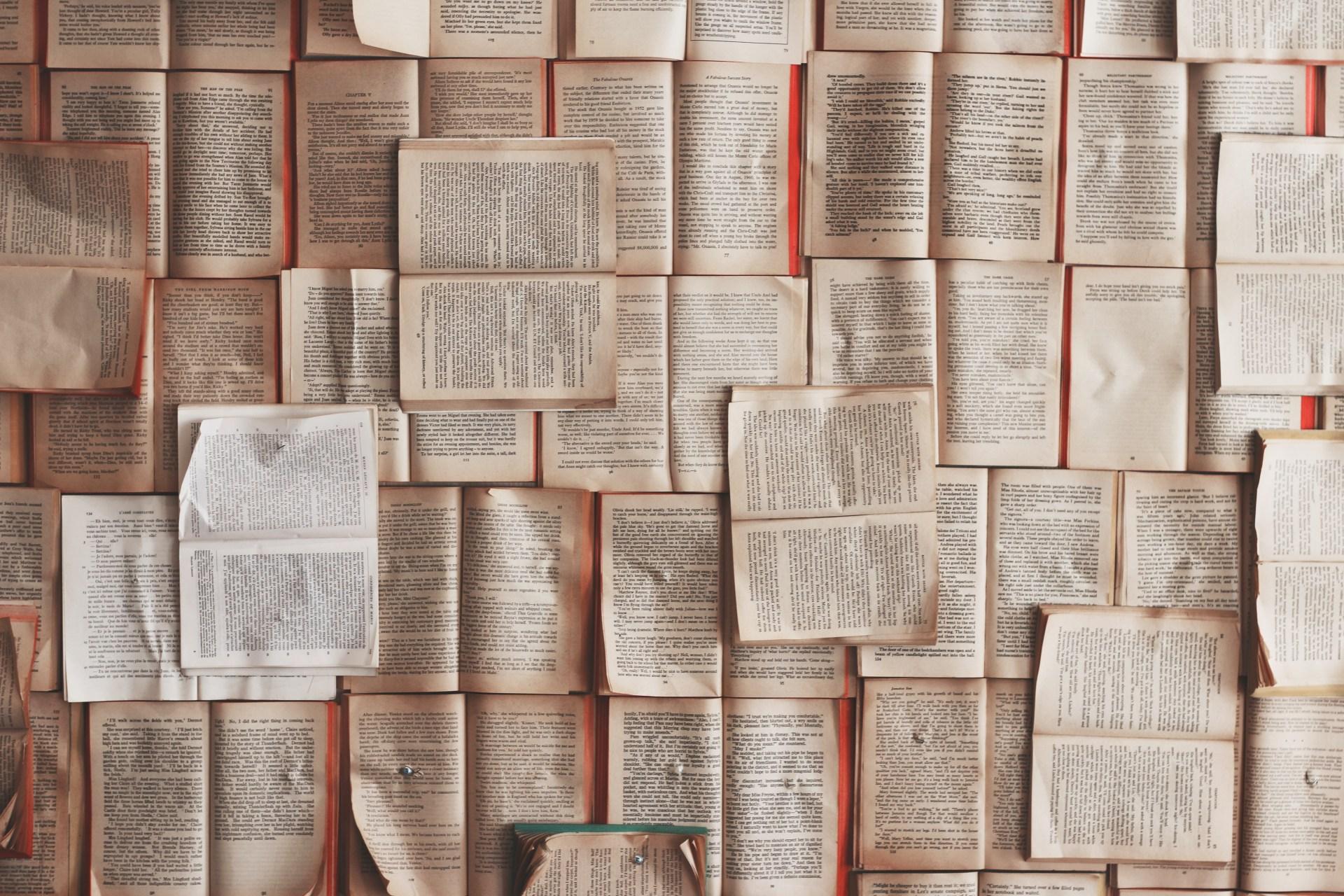 Open Book Lot Photo