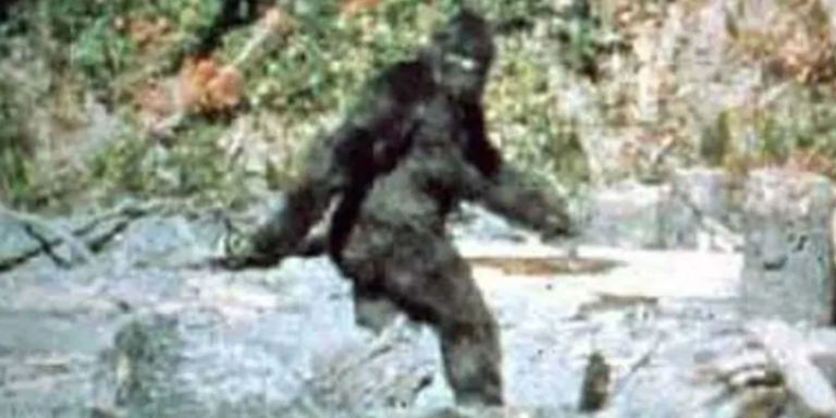 The 10 Best Arguments That Bigfoot IsReal